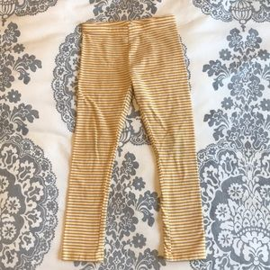 Yellow/gold striped leggings